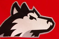 Colleges With Husky Mascots